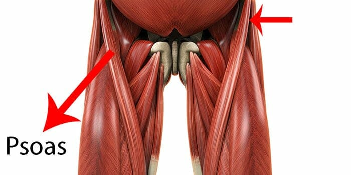 Diagram showing the location of the psoas