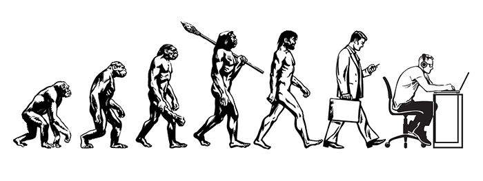 Human evolution into office workers