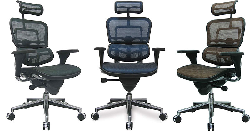 Eurotech Ergohuman office chairs