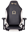 Secretlab Omega chair