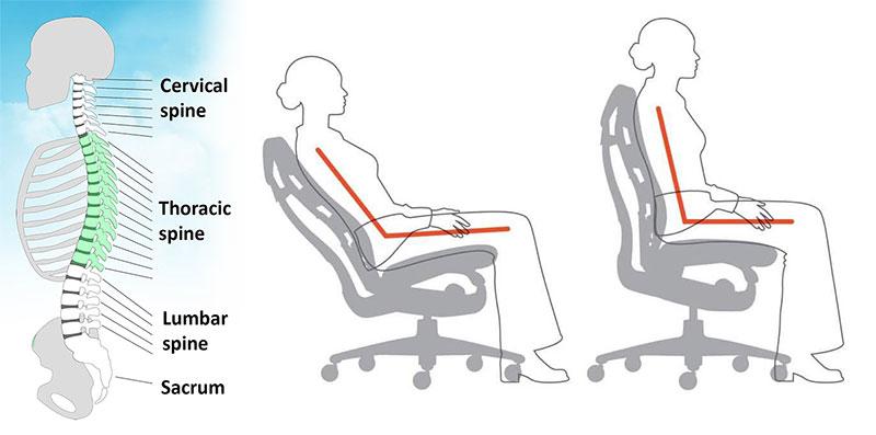Embody chair synchro-tilt back support