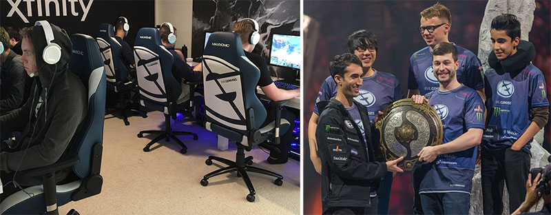 About the Evil Geniuses esports team