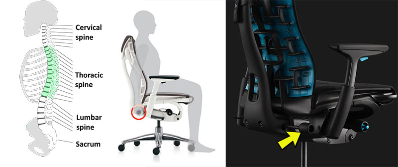 Embody chair backrest functionality
