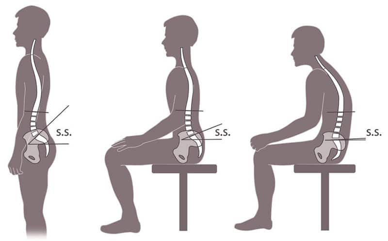 Sitting versus standing mechanics