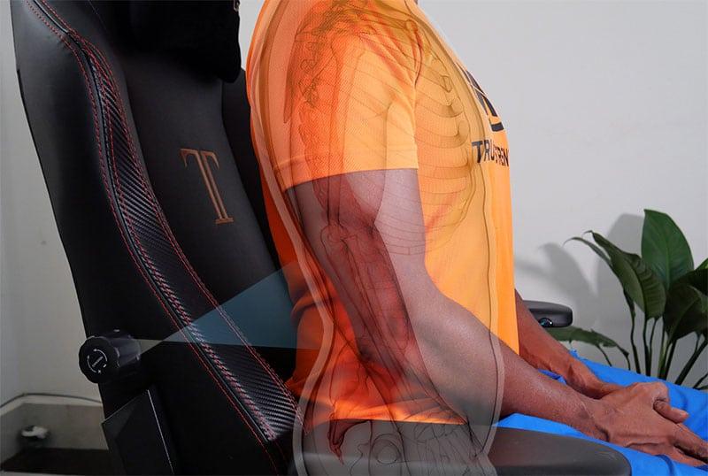 Secretlab Titan lumbar support
