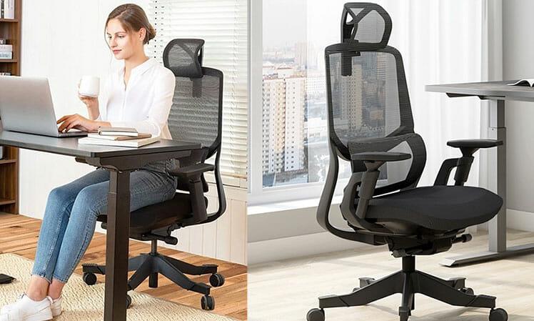Soutien Ergonomic Office Chair chair