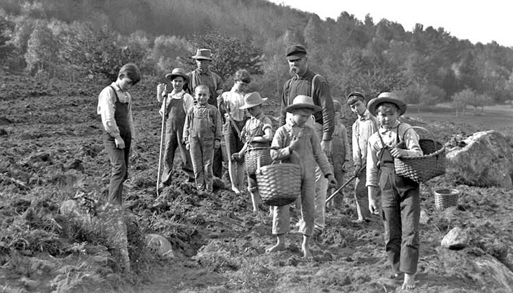 Young boys working the fields in 1910