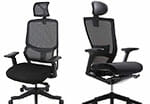 Flexispot Soutien ergonomic office chair