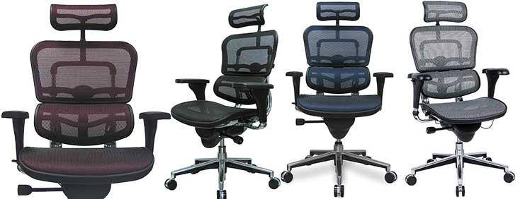 Eurotech Ergohuman High Back Mesh Chair