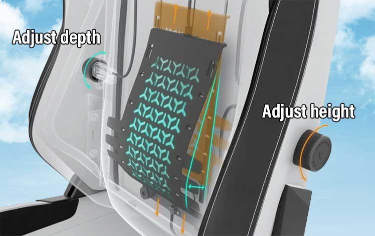 Titan Evo 2022 Series lumbar support adjustability
