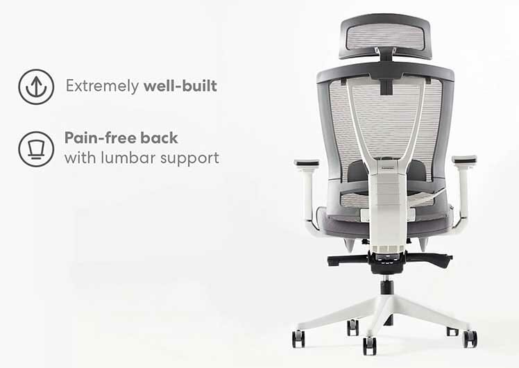 Autonomous Ergochair back support system
