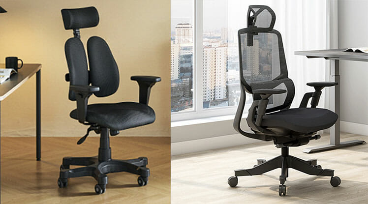 Duorest Gold vs Flexispot Soutien chair