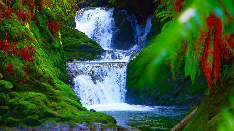 Waterfall white noise